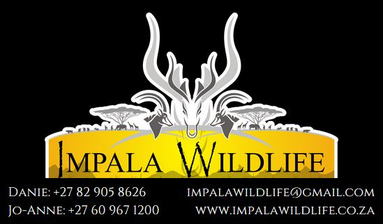 Impala Business Card
